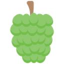 Custardapple Icon