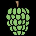 Custardapple Icon