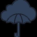 Data Insurance Icon