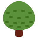 Deciduous Icon