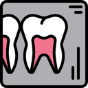 Dental x - ray Icon