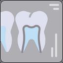 Dental x-ray Icon
