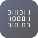 Digital Binary Encryption Icon