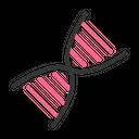 Dna Genetics Dna Strand Icon