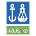 Dnv Icon