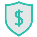 Dollar Shield Secure Icon