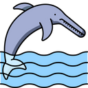 Ganga River Dolfin Icon