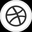 Dribbble Media Social Icon