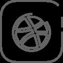 Dribbler Media Social Icon