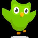 Duolingo Symbol Brand Icon
