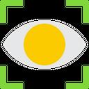 Eye Scan Icon