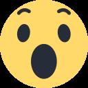 Facebook Wow Logo Icon