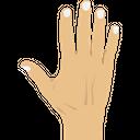 Finger Fingernail Body Icon