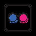 Flickr Share Social Icon