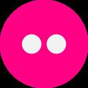 Flickr Social Media Icon