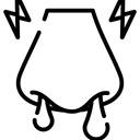 Virus Disease Infection Icon