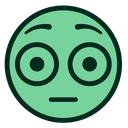 Green Flushed Smiley Icon