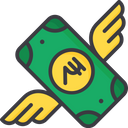 Flying money Icon