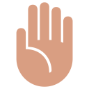 Fronthand Icon