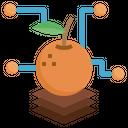 Fruit Analysis Production Analysis Graph Icon