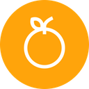 Fruit Diet Nutrition Icon
