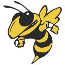 Georgia Tech Yellow Icon