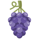 Grape Berries Fruit Icon