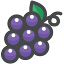 Grape Fruit Vitamin Icon