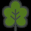 Grape Vine Vine Leaf Icon