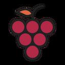 Grape Fruit Autumn Icon