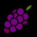 Grapes Nature Vegetarian Icon