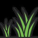 Grass Green Grass Greenery Icon