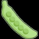 Vegetables Fiber Food Icon