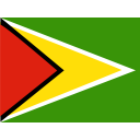 Guyana Flag Country Icon
