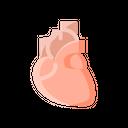 Heart Medical Breath Icon