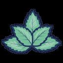Herb Leaf Mint Icon