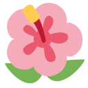 Hibiscus Plant Bloosom Icon