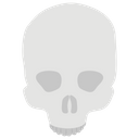 Human Skull Skull Anatomy Physiology Icon