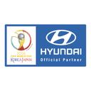 Hyundai Fifa World Icon
