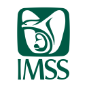 Imss Icon