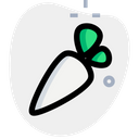 Instacart Icon