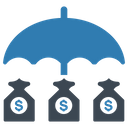 Insurance Investment Protection Icon