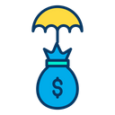 Investment Dollar Insurance Invest Icon