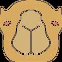 Camel Icon