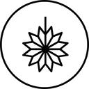Lamp Star Decoration Icon