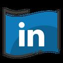 Linkedin Social Media Social Network Icon