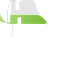 Mint Brand Logo Icon