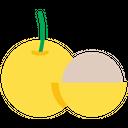 Longan Icon