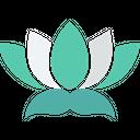 Lotus Flower Lotus Lily Icon