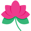 Lotus National Flower Flower Icon